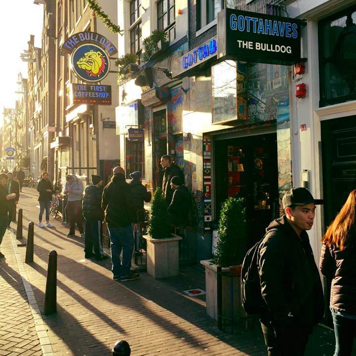 the_bulldog_amsterdam_travel_holland_flights_accomodation.jpg